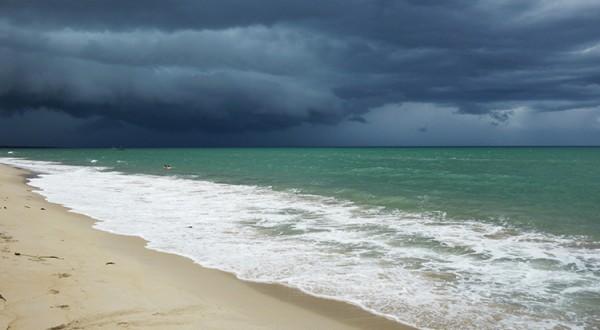 Vietnam-green-monsoon-mai-hua-750